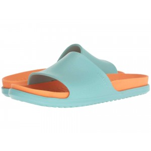 Spencer LX Sherbert Blue/Lazer Orange