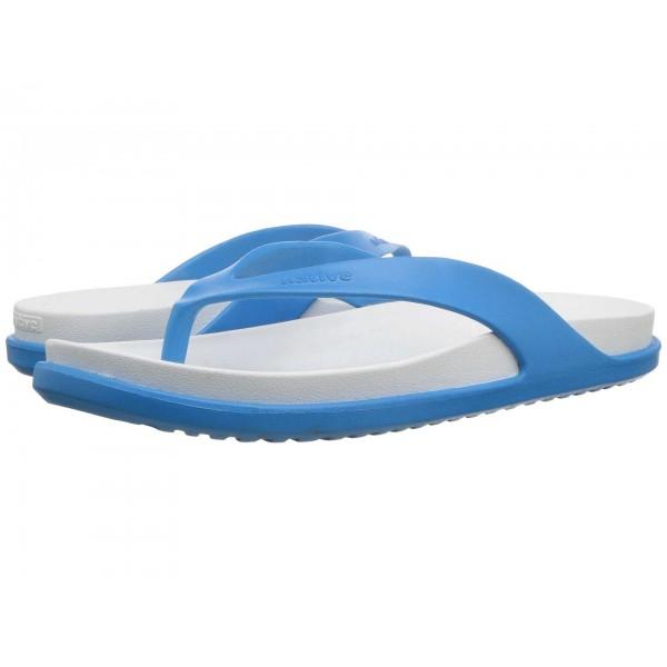 Yates LX Wave Blue/Shell White